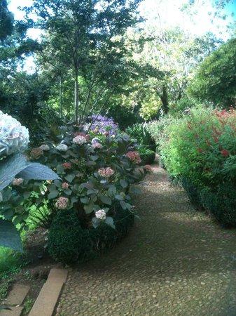 Casa Velha do Palheiro: Palheiro Gardens nextdoor