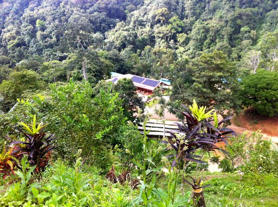 Osa Mountain Rainforest Villas & Adventures: looking down on the community