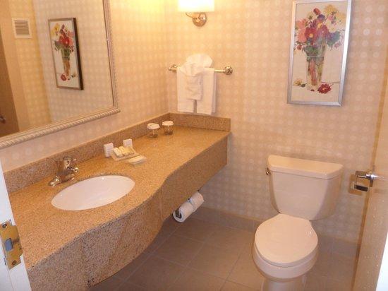 Hilton Garden Inn Detroit-Southfield: Nice bathroom