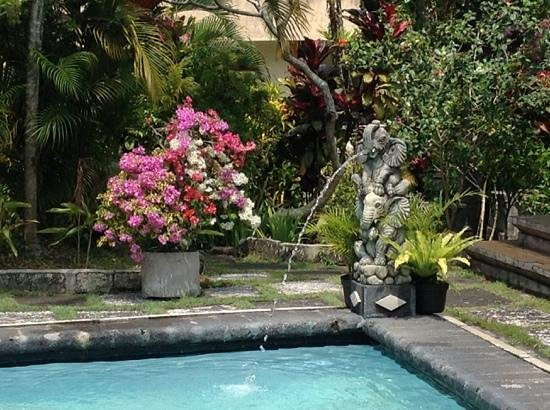 Okawati Hotel: part of the garden and swimmingpool
