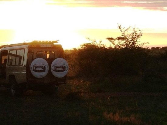 Kilima Valley Serengeti Tented Lodge: kilima sunrise