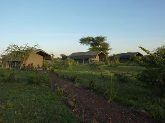 Kilima Valley Serengeti Tented Lodge: Kilima Camp