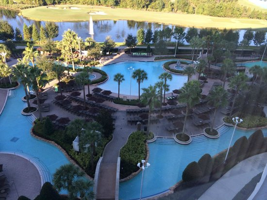 hotel pool area picture of hilton orlando bonnet creek. Black Bedroom Furniture Sets. Home Design Ideas