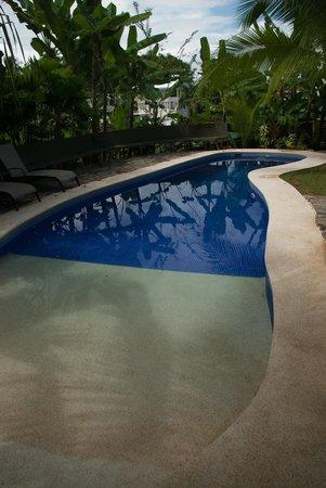 Villas Oasis: Pool