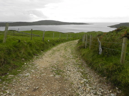 Clifden Castle : The path down- the dry part!