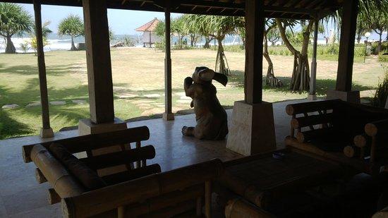 Pondok Pitaya: Hotel, Surfing and Yoga: view