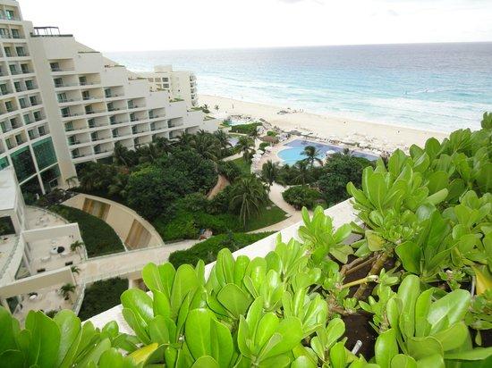 Live Aqua Beach Resort Cancun: View from Aqua Suite