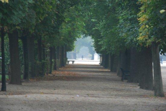 Schonbrunner Gardens: Garden view