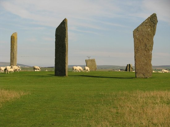Orkney Aspects Tours: A few of the Stones of Stenness