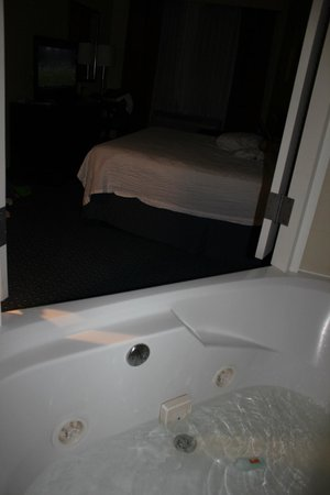 Fairfield Inn New York Long Island City/Manhattan View: Loved our jetted tub in the room