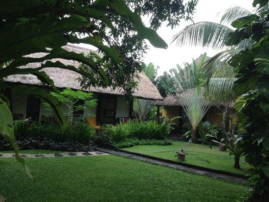 Rapture Surfcamp Bali: garden