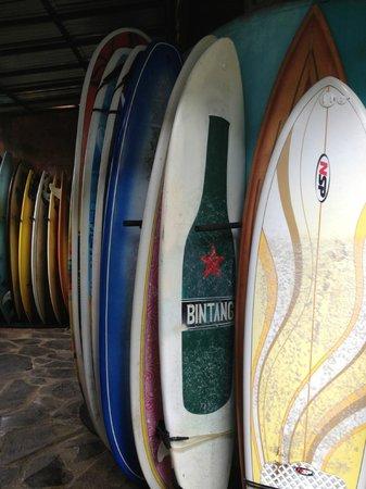 Rapture Surfcamp Bali: surf equipment