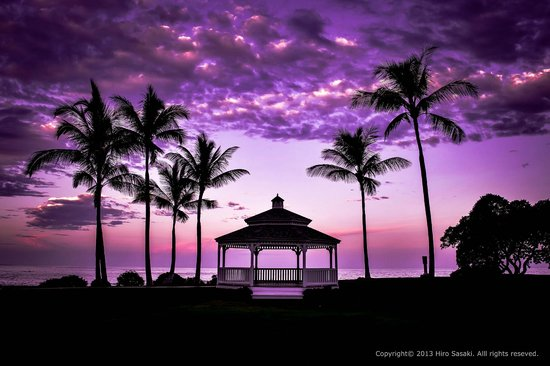 Fairmont Orchid, Hawaii : ガーデン