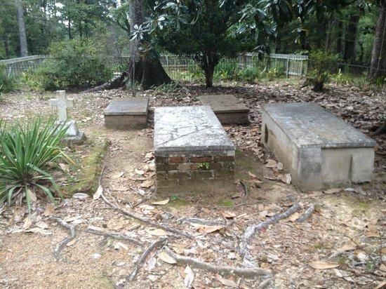 Rosemont Plantation: cemetery
