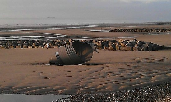 "Thornton Cleveleys, UK: ""Shell Scuplture"" Cleveleys Beach Oct 2013"