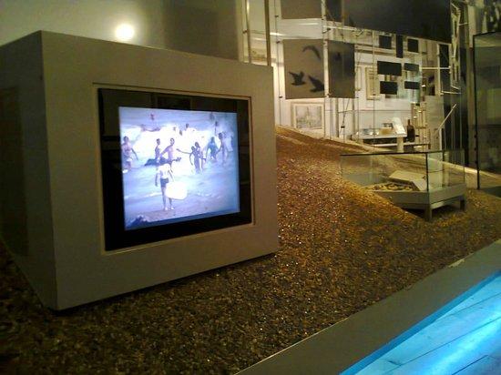 Brighton Museum and Art Gallery : Пляж Брайтона