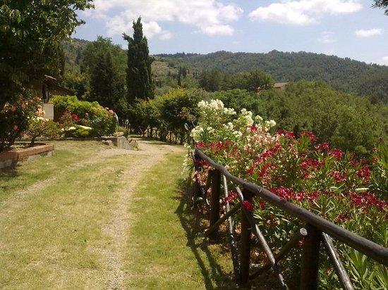 Residence Casa Lama: il paradiso si trova in toscana