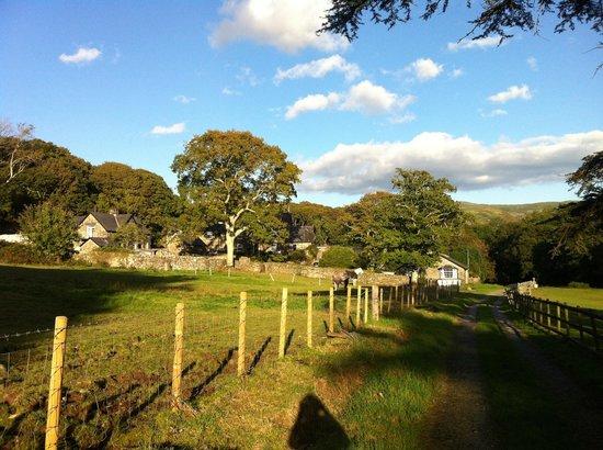 Gwynfryn Farm Cottages and B&B : View of farm from bridal path