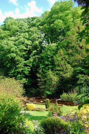 Dilston Mill B&B: Dilston Garden