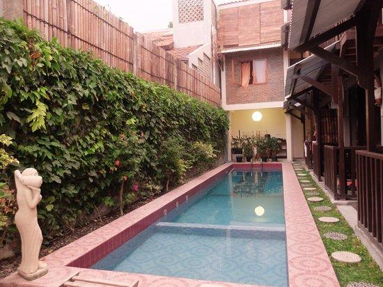 Venezia Garden: the pool