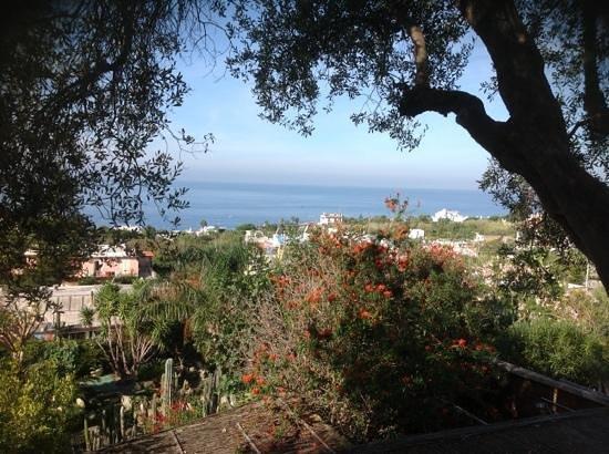 Residence Villa Ravino: il panorama