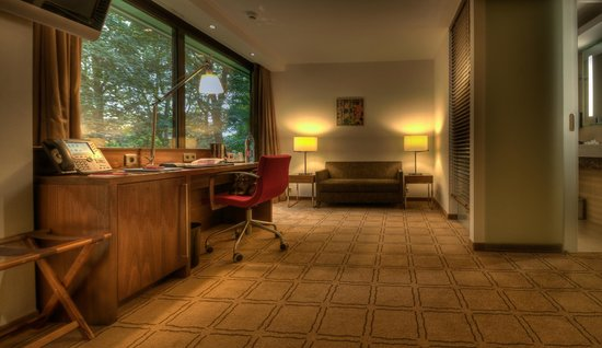 Dolce la Hulpe Brussels: Chambre Executive Room