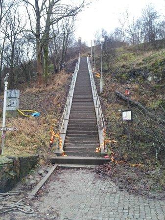 Skansen Kronan: Den långa trappan upp (finns bilväg runt)
