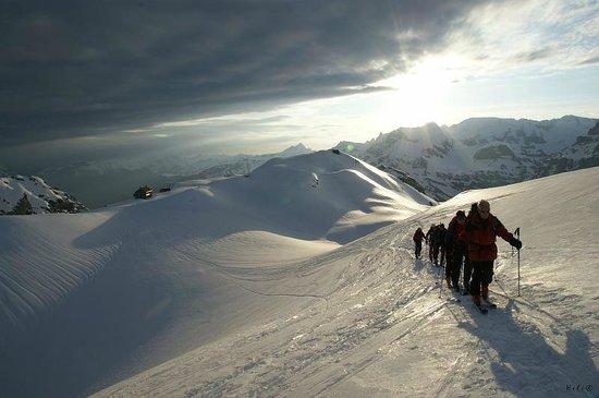 Alpine School Bergaufbergab: Skitour Swiss