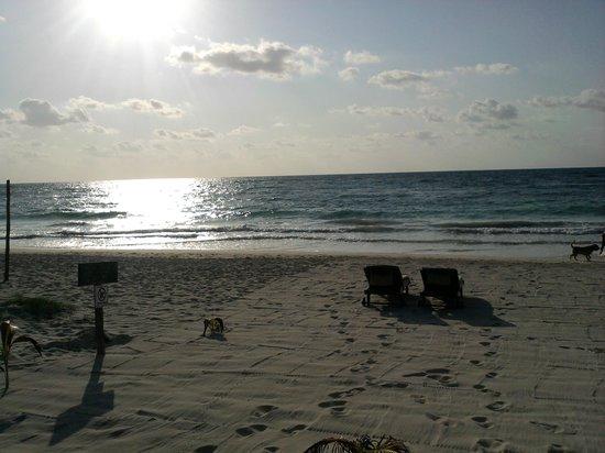 Azucar Hotel: azucar reserved beach