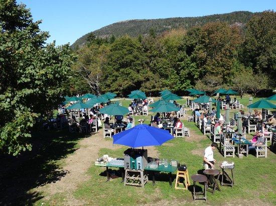 Wonderful outdoor seating area of Jordan Pond House