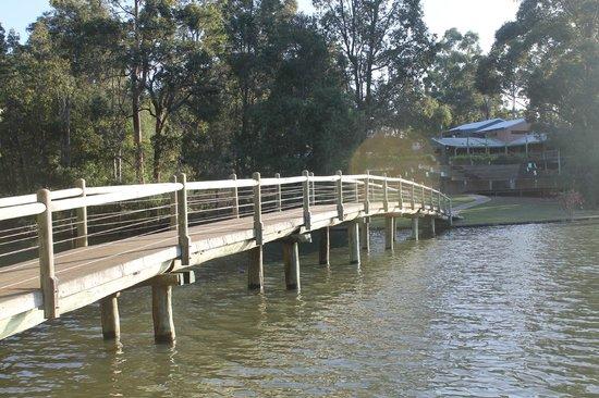 Evedon Park Bush Retreat: The bridge