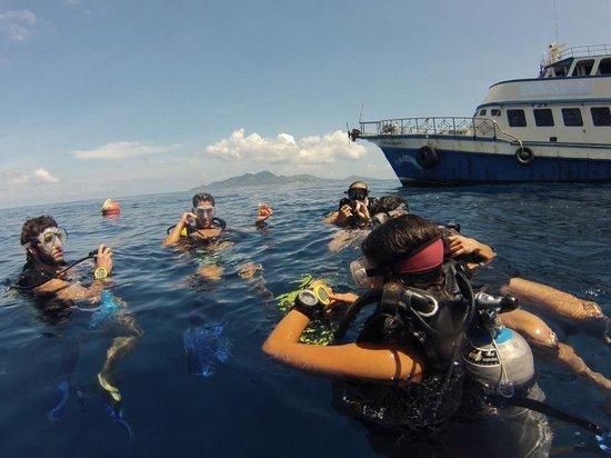 Ban's Diving Resort: Diving