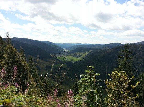 Landhotel Bierhäusle: Blick ins Menzenschwander Tal - Tour zum Feldberg