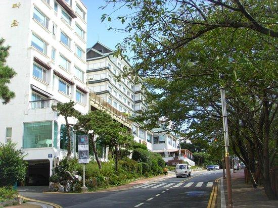 Haeundae Dalmaji-gil Road: Road near Shelly Town