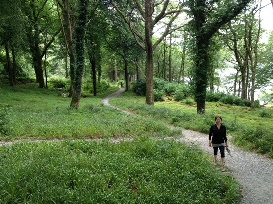 Loch Lein Country House : O our walk around Muckross Lake