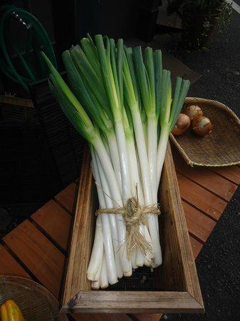 Onegiya Shinjuku ten: Green Onions...