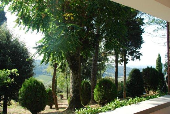 Al Gelso Bianco Farm-Holiday Resort : View from Apartment