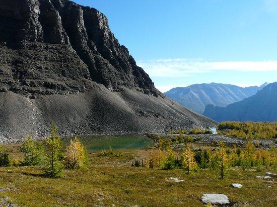 Sentinel Pass : A lovely spot
