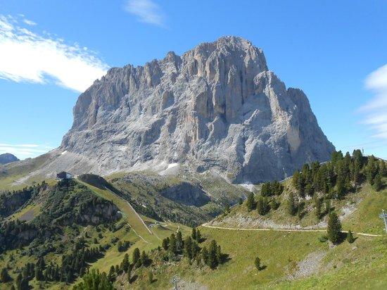 Ciampinoi: Vista sul Sassolungo(parete Nord)