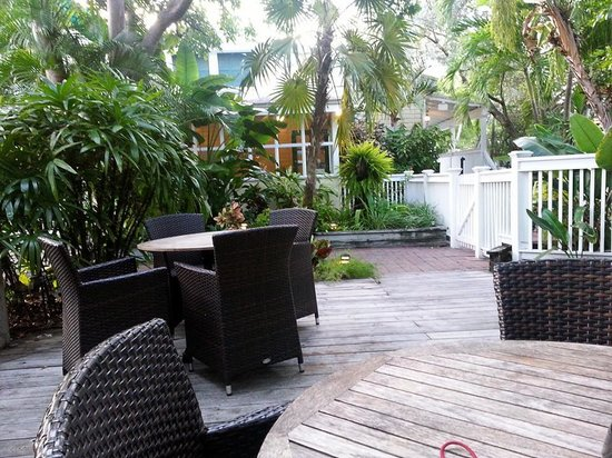 Merlin Guest House Key West : poolside morning view