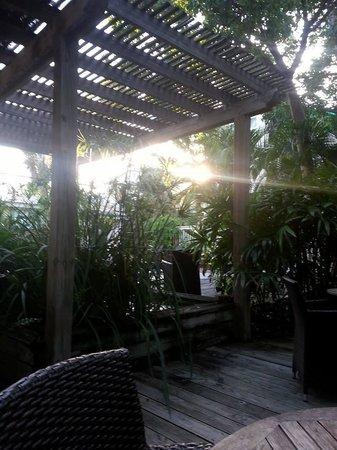 Merlin Guest House Key West: courtyard for breakfast