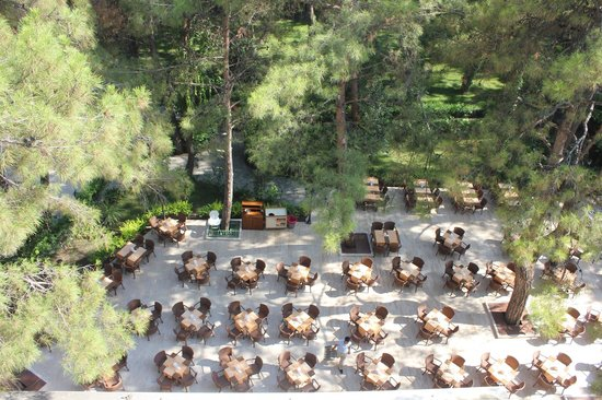 Jeans Club Hotels Festival : Palmariva Club Festival (ресторан)