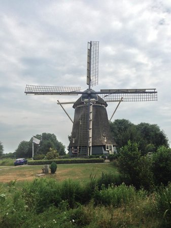 Joy Ride Tours: The mill...