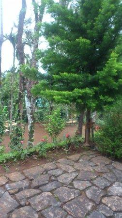 Kaivalyam Retreat: Greenary