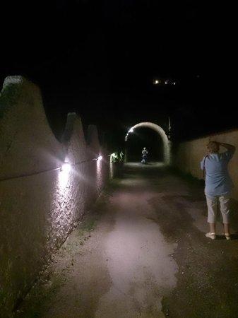 """Le Palme Garden: the entrance to """"Le palme"""" at night"""