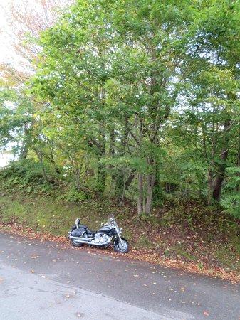 Bandai Hibara Kohan Hotel: バイクの駐車場はありません