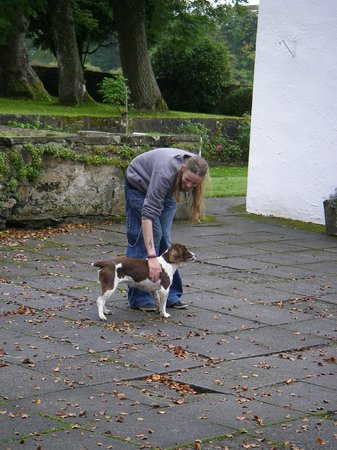 South Craighall B&B: my son with the very friendly dog on the courtyard #1