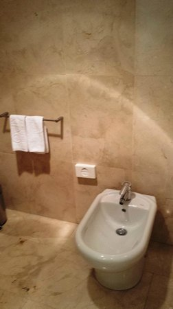 Gran Hotel Torre Catalunya: A bidet for after use