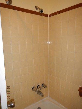 Falcon Motel: tub-shower
