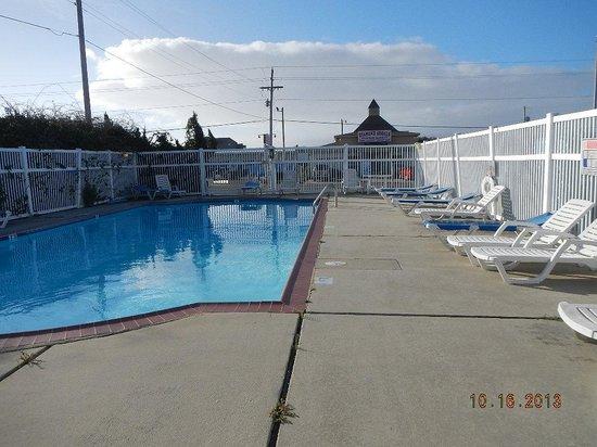 Falcon Motel: pool